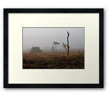 Holt Heath misty morning Framed Print