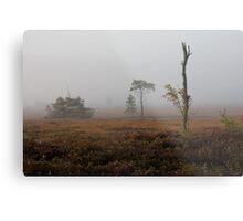 Holt Heath misty morning Metal Print
