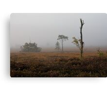 Holt Heath misty morning Canvas Print
