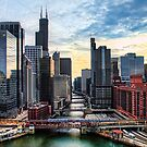 Chicago River by Tammy Wetzel