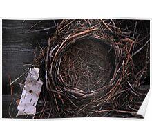 Empty Nest Poster