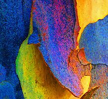 Summer Eucalypt Abstract 11 by Margaret Saheed