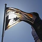 Australian Flag on Sunny Day by Stephen Mitchell