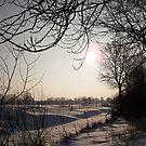 Winter in Holland (Netherlands) by KoosG