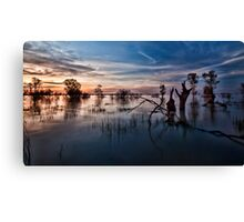 Menindee, the Transition Canvas Print