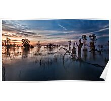 Menindee, the Transition Poster