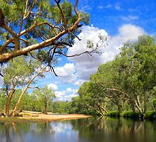 Panoramic River In The Centre of Oz. by Noeline R