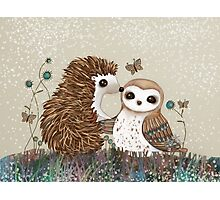 Owl and Hedgehog Photographic Print