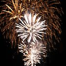 new years fire works by sharon wingard