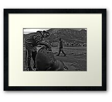 Andre and his Pet Seal Framed Print