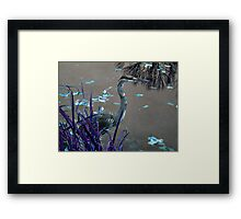 Blue Heron against Purple grass Framed Print