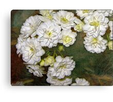 white may Canvas Print