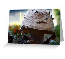 Mushroom Kingdom (1116) Greeting Card