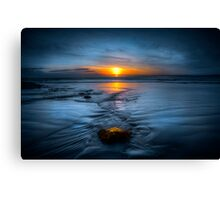 Spine Wave Canvas Print