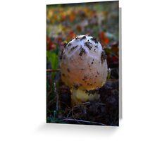Mushroom Kingdom (0389) Greeting Card