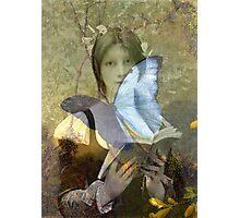 Butterflies do not lie Photographic Print