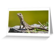 Young Water Dragon Greeting Card
