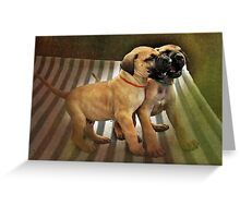 Dane Pups Greeting Card