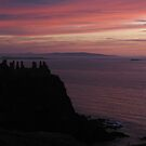 Dunluce Castle iPhone Case by Jan Vinclair
