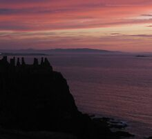Dunluce Castle iPhone Case by Jan Vinclair