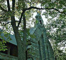Green Granite: The Church of St. Luke, the Beloved Physician by Jane Neill-Hancock