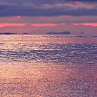 Salish Sea Morning by TerrillWelch