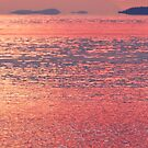Salish Sea in Something Pink  by TerrillWelch