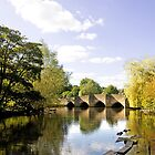 Bakewell Bridge, Over the River Wye  by Rod Johnson