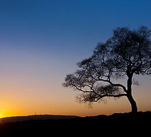 Surprise View - Lone Tree Sunset by Jon Bradbury