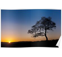 Surprise View - Lone Tree Sunset Poster