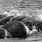 Stones and water by Tony Steel