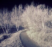 Charnwood Lake IR 2.0 by Yhun Suarez