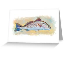 Redfish Illustration, Red Drum Greeting Card