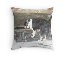 Jack the Mac from Krugersdorp, Gauteng, South Africa Throw Pillow