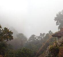 La Barranca by Richard G Witham