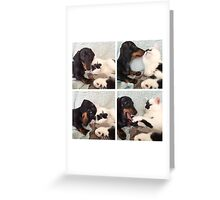 Friends Furrever Greeting Card