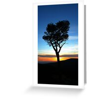 Tree in the sunset Greeting Card