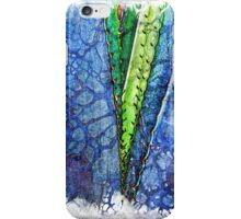 The Atlas of Dreams - Color Plate 187 iPhone Case/Skin