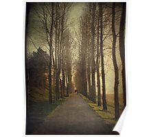 Walks of winter Poster