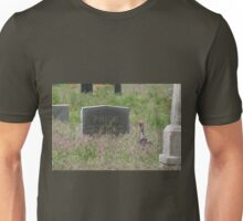 A Visitor Unisex T-Shirt