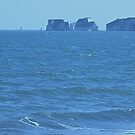 Old Harry Rock, Studland, Dorset, England by MagsWilliamson