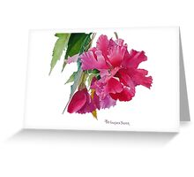Ruffled Begonia Watercolor Greeting Card