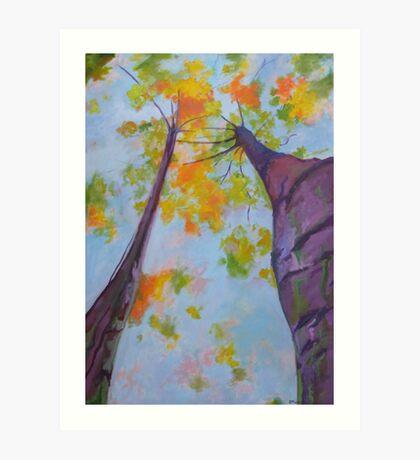 Purple Bark Tree Art Print