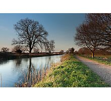 Bridgwater and Taunton Canal Photographic Print