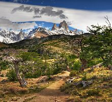 The Track to Mt Fitzroy by Peter Hammer