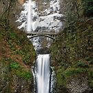 Multnomah Falls in January by Jennifer Hulbert-Hortman
