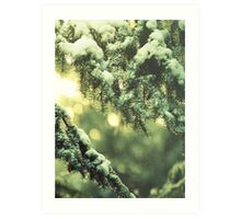 The first fall of snow is not only an event, it is a magical event Art Print