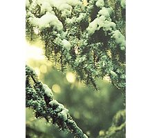 The first fall of snow is not only an event, it is a magical event Photographic Print