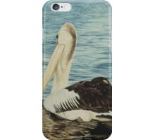 Gliding on Silver iPhone Case/Skin