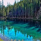 Emerald Mountain Pond by Jo-Anne Gazo-McKim